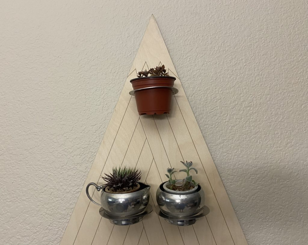 Free Pong board holding succulent plants.